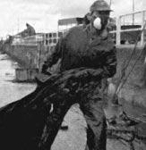Efectos de los residuos de petróleo del «Prestige» sobre la salud