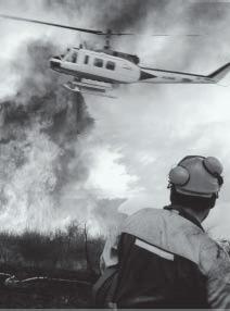 Los incendios forestales han sido noticia un año más