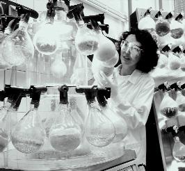 La química verde ya es una realidad