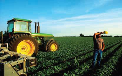 El dilema de los biocarburantes