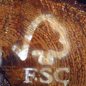 La certificación FSC