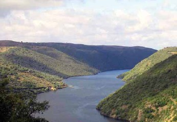 La Confederación del Tajo no cuenta con la sociedad civil en la planificación hidrológica