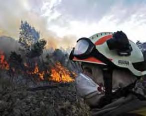 Incendios forestales 2009, un año para no olvidar y tomar buena nota
