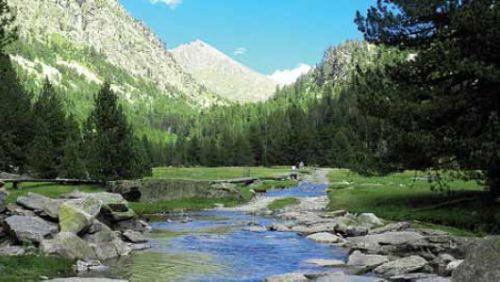 Acción sindical y su lugar en los espacios naturales protegidos