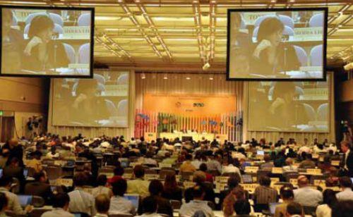 Nagoya: Hubo acuerdo, pero poco ambicioso