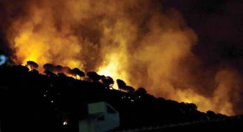 Menos hectáreas, más incendios