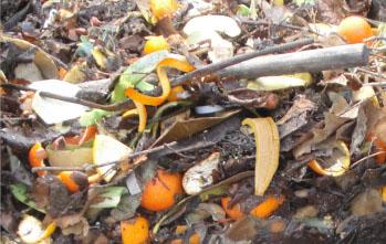 Gestión de la materia orgánica: ¿por qué desaprovechamos este recurso?