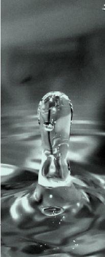 Agua: La nueva cultura que no llega