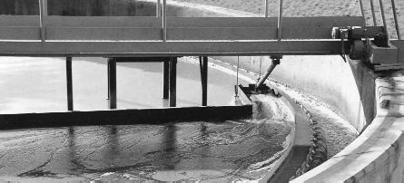 El accidente de Teià: riesgos de una planta de compostaje