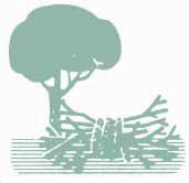 Impulsar la biomasa