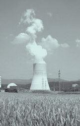 El debate nuclear. Joaquín Nieto. Secretario confederal de Medio Ambiente de CCOO