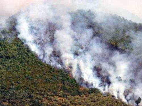 Incendios forestales, no podemos bajar la guardia